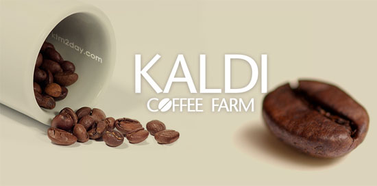 Kaldi Coffee blends launched in Nepal